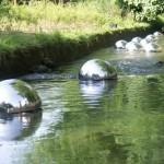 Objets flottants sur le ruisseau
