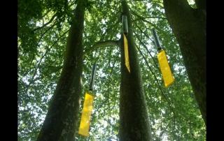 Parcours sonore du parc de la Vaucouleurs