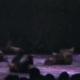 2001 Dansektivor
