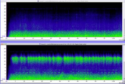 Spectrogramme, en haut couloir Montparnasse sans création sonore, en bas avec
