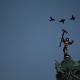 2014 Elle est où la Bastille ?
