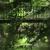 2015 L'Yvette – Chronique d'une rivière contemporaine